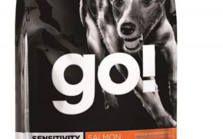 Холистик корм для собак: Забота о здоровье со вкусом