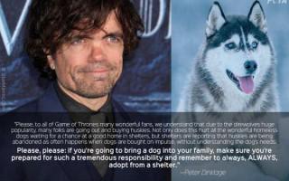 Какая порода собак снималась в«Игре престолов»