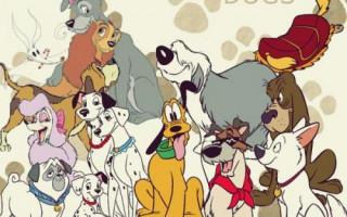 Клички собак из фильмов и мультфильмов — лучшие идеи для девочек и мальчиков