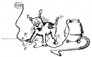 Поражение животных электрическим током