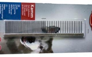 Что делать, если у собаки постоянная линька