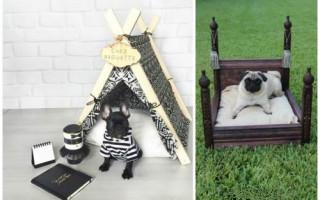 Лежанки для собак своими руками: забота о верном друге