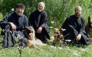 Можно ли содержать собаку в квартире с точки зрения православия