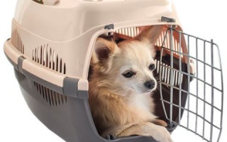 Сумки переноски для собак мелких пород в Екатеринбурге