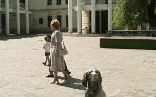 Порода собаки из фильма «Белый Бим Чёрное ухо»