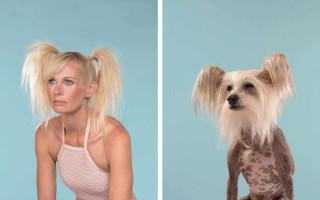 Фото собак, похожих на людей