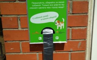В Перми будут установлены дог-боксы для уборки за собаками во время выгула