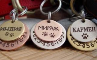 Адресники и медальоны для собак